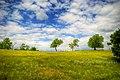 Remetea Mica-Shepherd Hills - panoramio.jpg