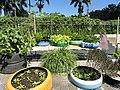 Research garden - San Juan Botanical Garden - DSC07070.JPG