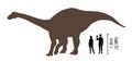 Riojasaurus size comparison.png