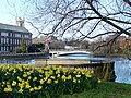 Riverside Gardens, Derby - geograph.org.uk - 279928.jpg