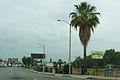 Rosemead, California.jpg