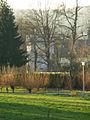 Rosheim - Tour de la Dame Braun ou Sainte-Marthe.jpg