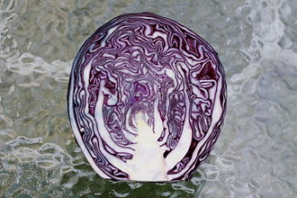 Red cabbage - A cut red cabbage