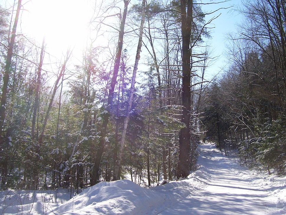 Route Verte 1 at Bishop's