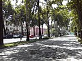 Rudaki Avenue sidewalk, Dushanbe 02.jpg