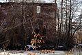Ruiny pałacu myśliwskiego – Grodziszcze (zetem) 7.jpg