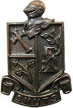 SADF Regiment Smuts beret badge