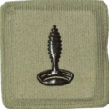 SANDF Rank Insignia Chaplain Hindu embossed badge.png