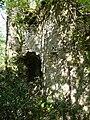 Saint-Front-la-Rivière ruines la Renaudie (40).JPG
