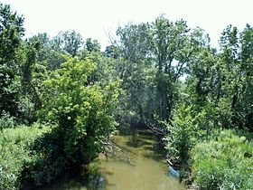 Salt Creek upstream from Route 6 Bridge 2011-08-07.JPG
