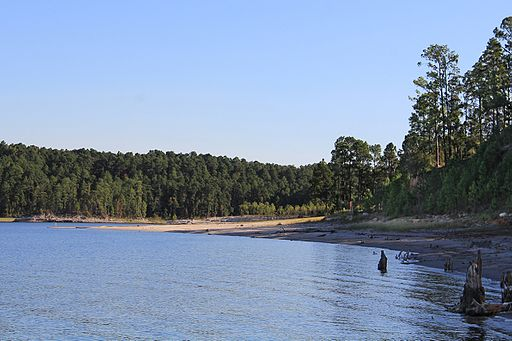 Sam Rayburn Reservoir bass fishing lake in texas