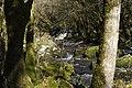 Saut-Chalard-hiver 02.JPG