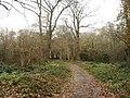 Scadbury Park Nature Reserve, Chislehurst - geograph.org.uk - 1053625.jpg