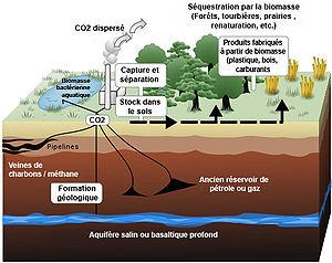 S questration du dioxyde de carbone wikimonde - Dioxyde de carbone danger ...