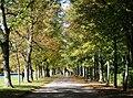Schlosspark Nymphenburg Herbst-2.jpg