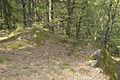 Schwedentisch S-N.jpg