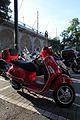 Scooter-IMG 5582.JPG