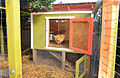 Seattle Chicken Coop with Enclosed Run.jpg