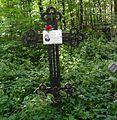 Shafranov Nicholas grave.JPG