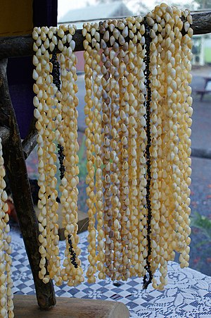 Shell jewelry - Necklaces made in Raratonga, Cook Islands