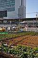 Shin-Yokohama Station 新横浜駅 篠原口 - panoramio.jpg