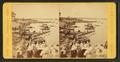 Shore view, Salem Neck, by J.W. & J.S. Moulton.png
