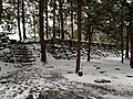Site of Hommaru of Azuchi Castle in a snowy day.JPG