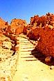 Siwa Oasis, Qesm Siwah, Matrouh Governorate, Egypt - panoramio (9).jpg