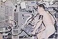 Skylab 2 Weitz using bicycle ergometer.jpg