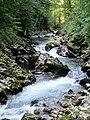 Slovenia - Gole di Vintgar (11732412636).jpg
