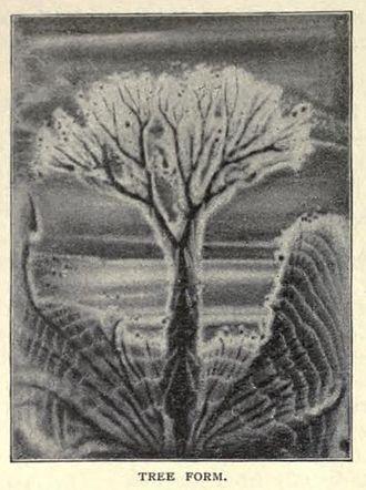 Megan Watts Hughes - Image: Sound Tree Margaret Watts Hughes