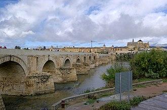 Guadalquivir - Roman bridge, Córdoba