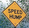 Speed hump.jpg