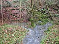 Spring in Slade Bottom, St Briavels - geograph.org.uk - 286050.jpg