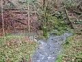 Spring in Slade Bottom, St Briavels - geograph.org.uk - 286050.jpg