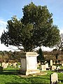 St Edmund's church - churchyard - geograph.org.uk - 664899.jpg