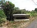 Starr-090720-3071-Antigonon leptopus-habitat with WWII bunker-Waiehu-Maui (24943880426).jpg