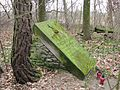 Stary cmentarz Wiązownica Mała 2013 02.JPG