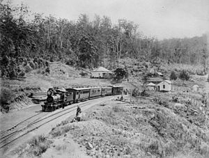 Main Line railway, Queensland - Spring Bluff station, located on the Main Line between Ipswich and Toowoomba, 1891