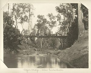 Logan River - Logan Bridge below Tamrookum, 1903