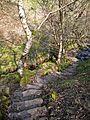 Steps down to Gill Hey Bridge, Holme, Holmfirth (3383375082).jpg