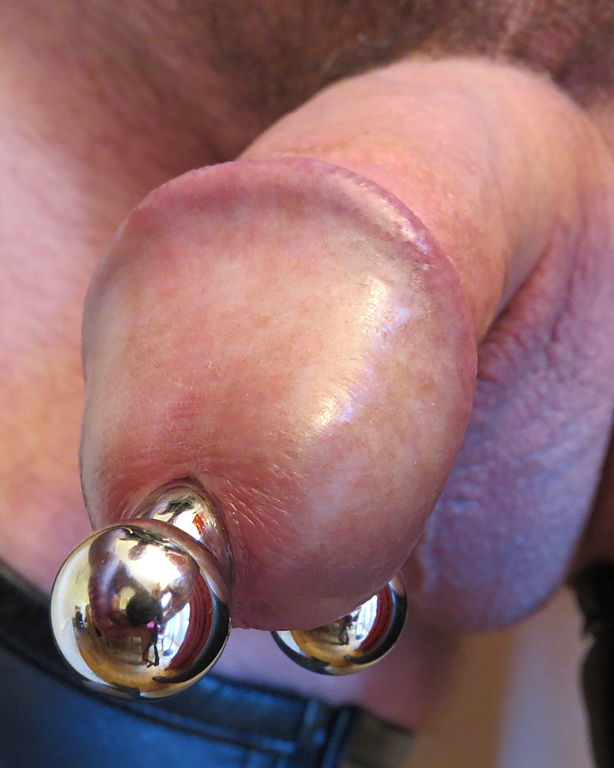 prince albert body piercing pictures