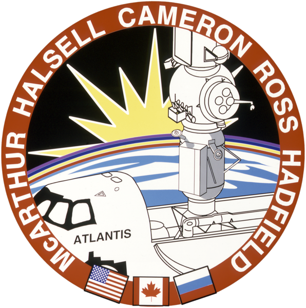 Bestand:Sts-74-patch.png