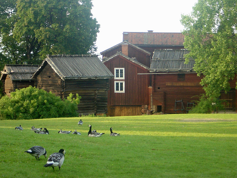 Summer view in Skansen.JPG