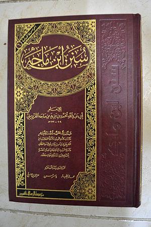 Majah shahih sunan pdf ibnu