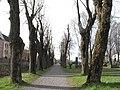 Tønsberg gamle kirkegård.jpg