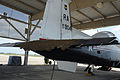 T-6A Texan II tail covered in bees.JPG