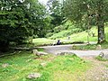 Taking it easy at Tarr Steps - geograph.org.uk - 926212.jpg