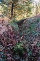 Talus et douve présumés de l'enceinte, Goarem-ar-Manec'h, La Feuillée, France.jpg