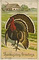 Thanksgiving Greetings, a very large turkey (NBY 18222).jpg